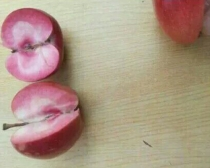 Red meat apple