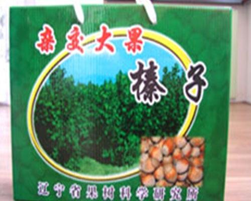 Hazelnut gift box packaging, hazelnut price