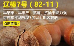Liao Zhen 7(82-11)