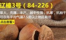 Liao Zhen 3